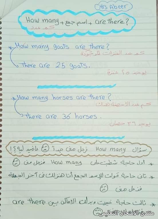 exam-eg.com_161688004467928.jpg