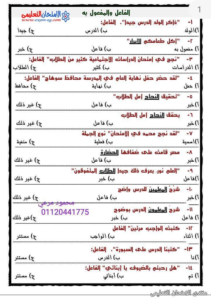 exam-eg.com_161688337287411.jpg