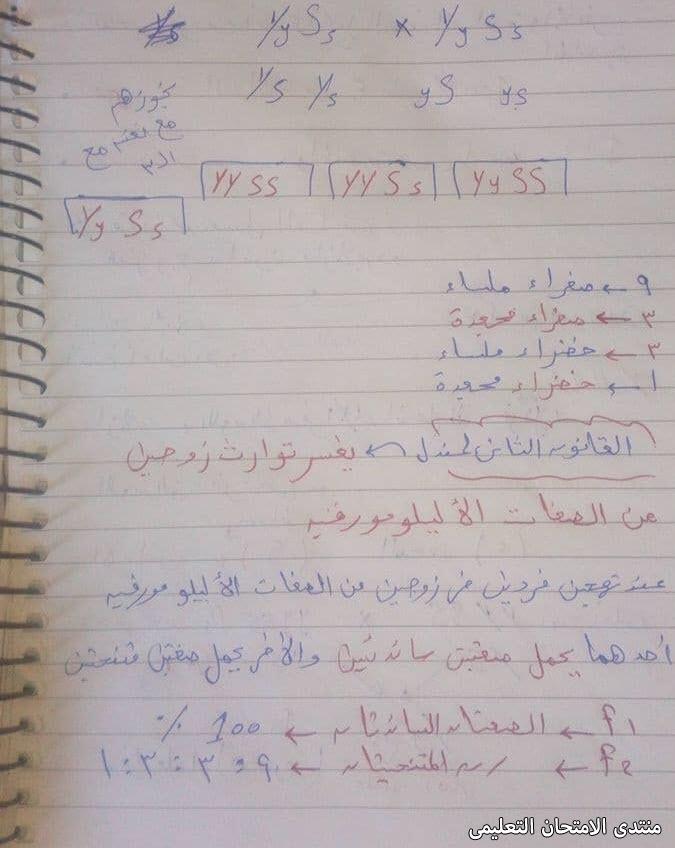 exam-eg.com_161705419942234.jpg