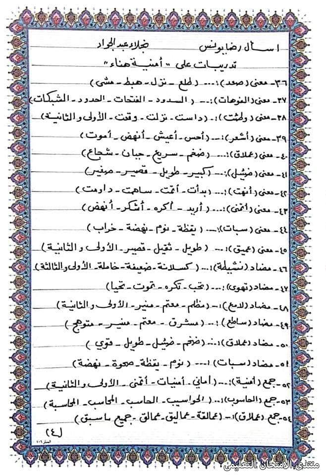exam-eg.com_161723264927142.jpg