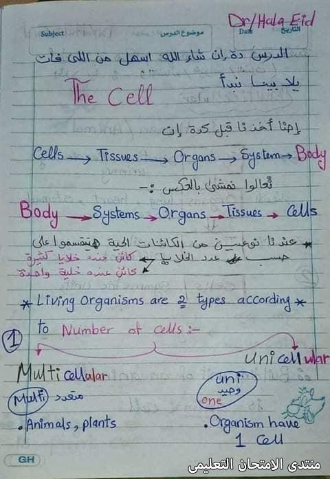 exam-eg.com_161723351923971.jpg