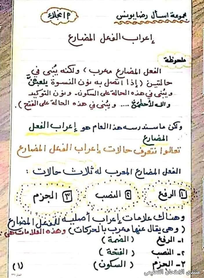 exam-eg.com_161747244360441.jpg