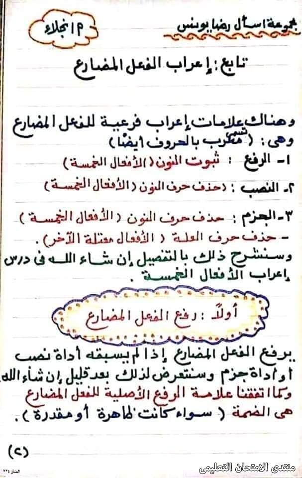 exam-eg.com_161747244365762.jpg