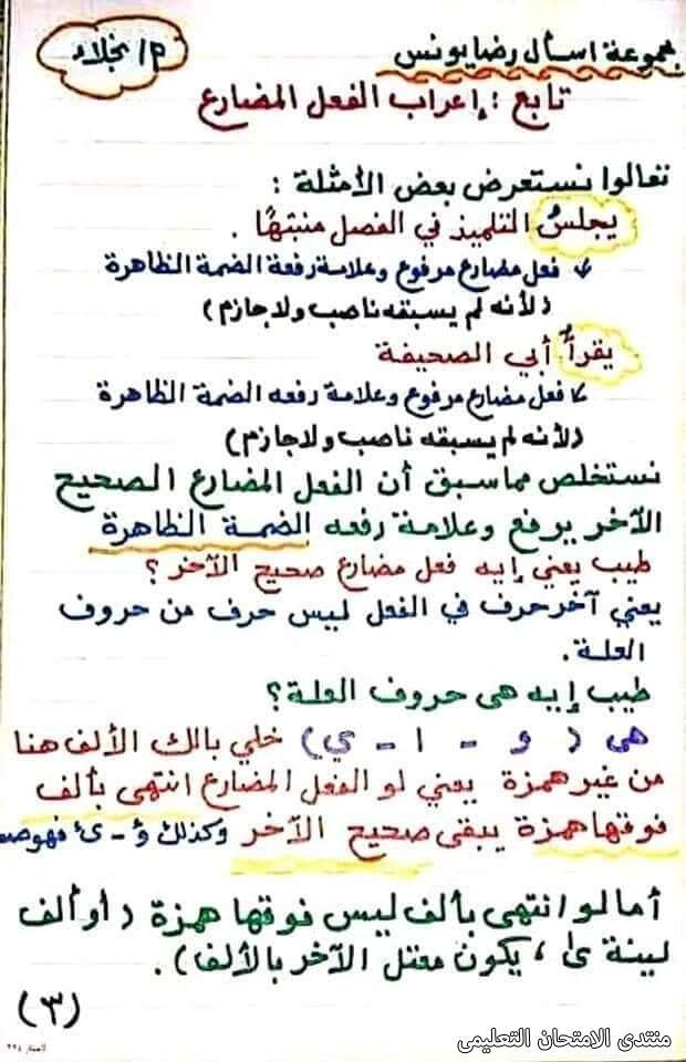 exam-eg.com_161747244369613.jpg