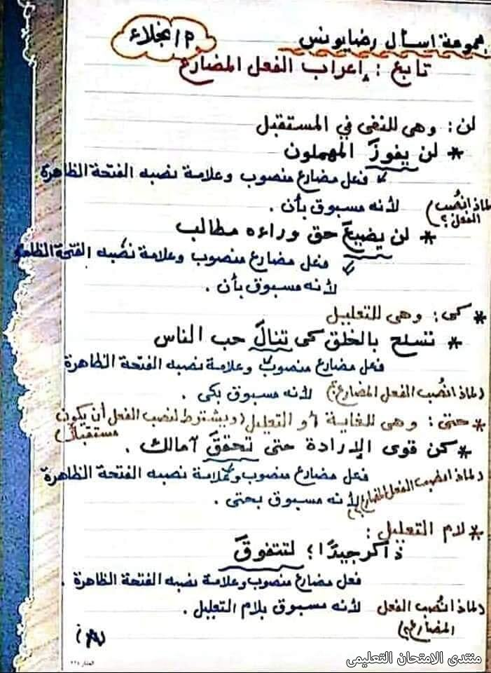 exam-eg.com_161747244390318.jpg