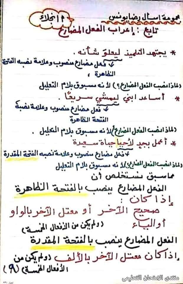 exam-eg.com_161747244394459.jpg