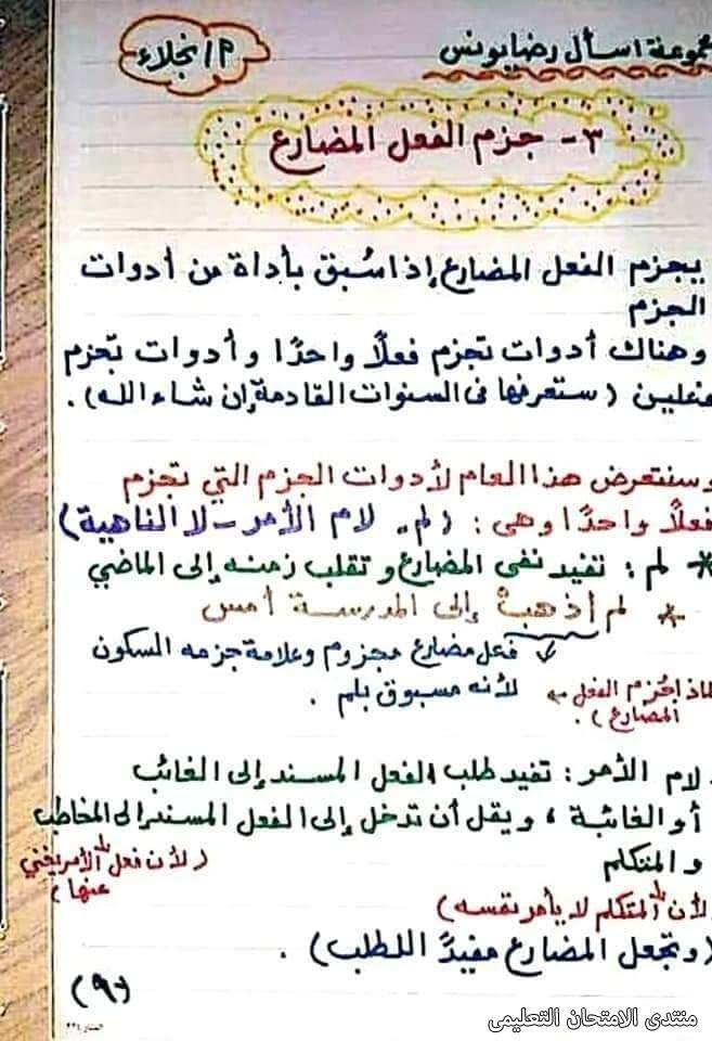 exam-eg.com_161747244397910.jpg