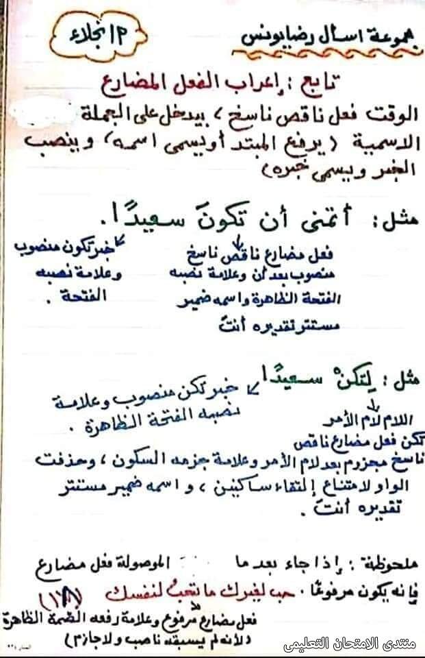 exam-eg.com_1617472444272918.jpg