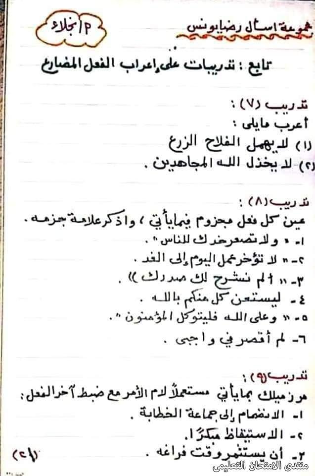 exam-eg.com_161747244984951.jpg