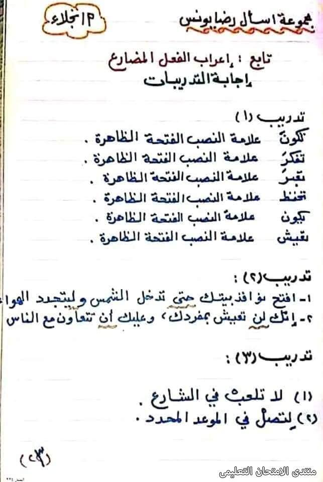 exam-eg.com_161747244991783.jpg