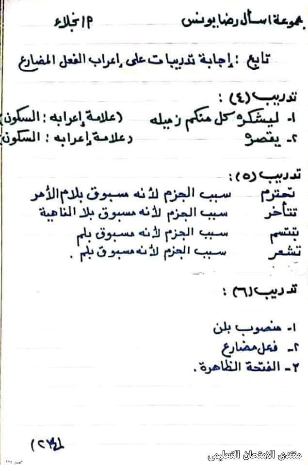 exam-eg.com_161747244994864.jpg