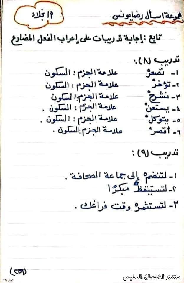 exam-eg.com_1617472450026.jpg