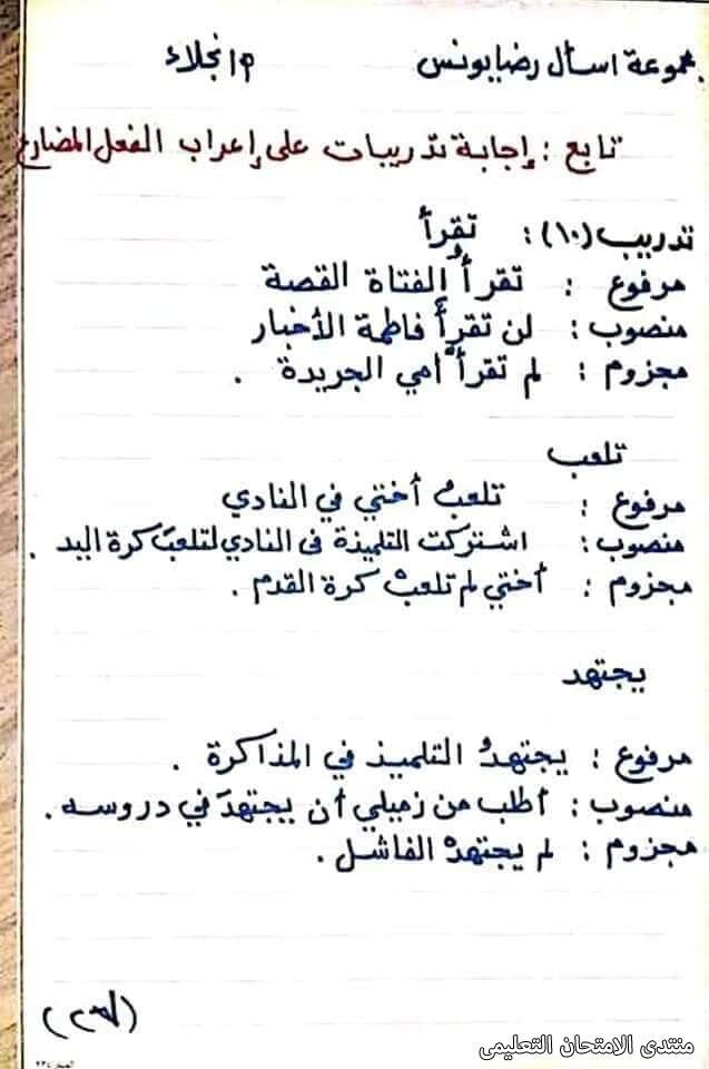 exam-eg.com_161747245005057.jpg