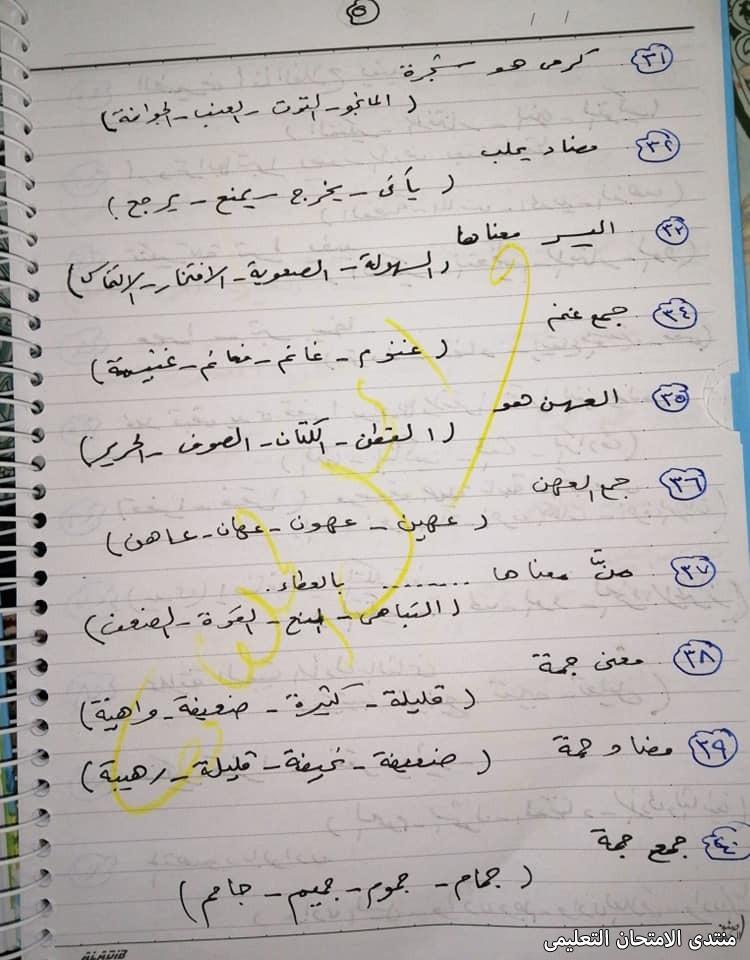 exam-eg.com_16178013888873.jpg