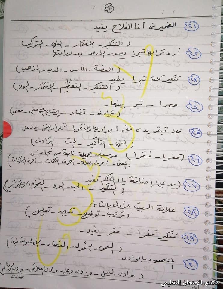 exam-eg.com_161780138892744.jpg