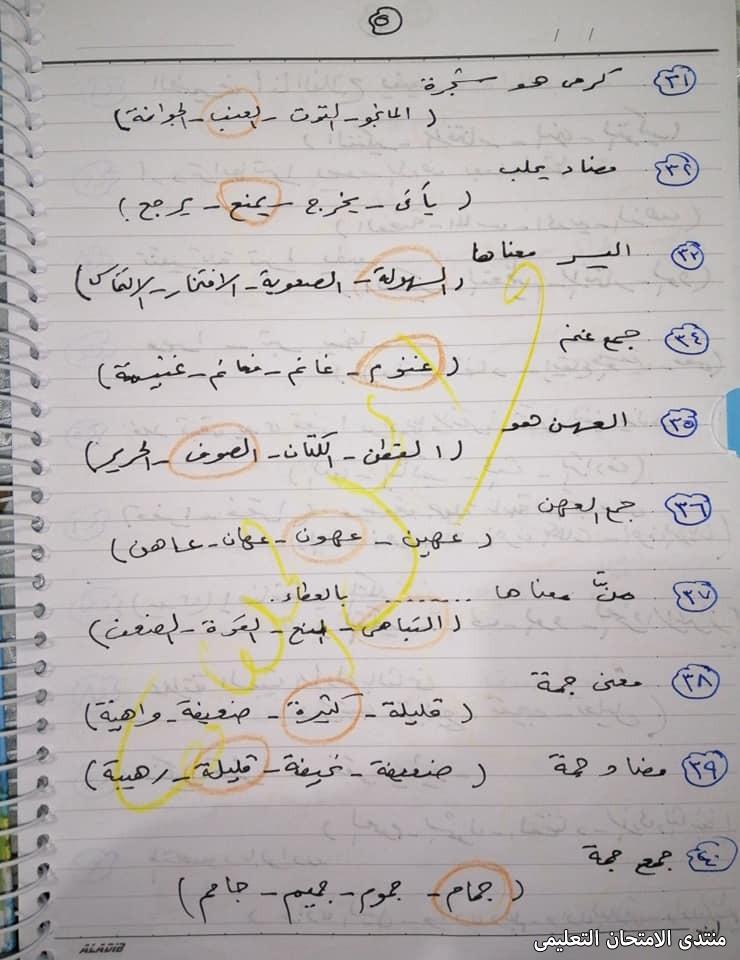 exam-eg.com_161780138912129.jpg