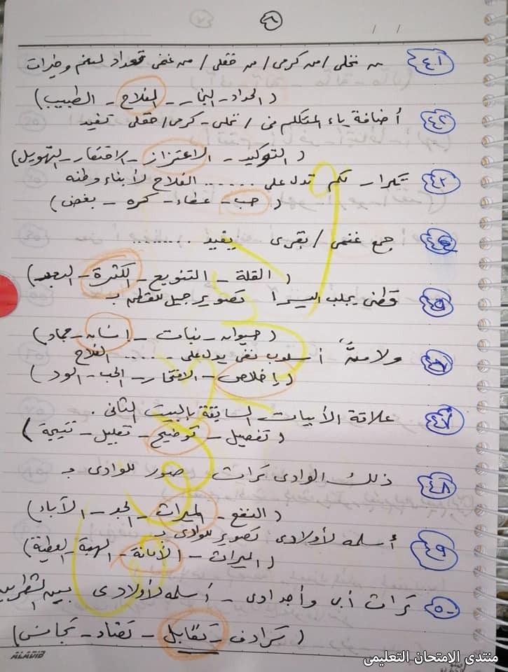 exam-eg.com_1617801389230312.jpg