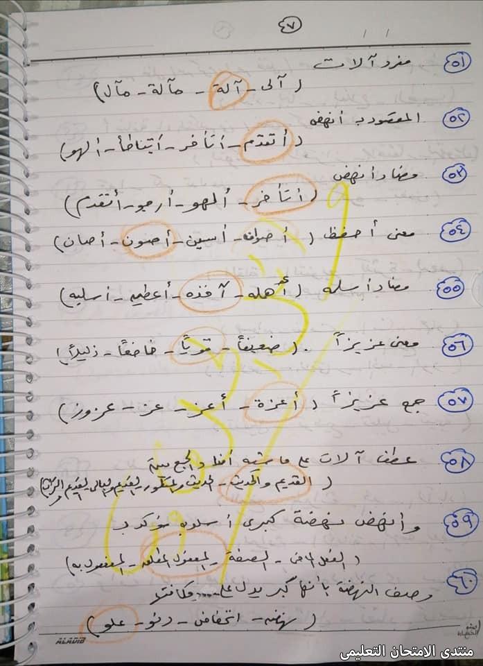 exam-eg.com_1617801389267413.jpg