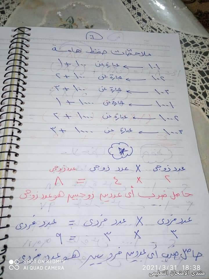 exam-eg.com_1617969327391517.jpg