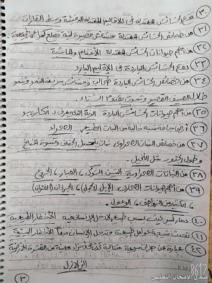 exam-eg.com_161809295906113.jpg