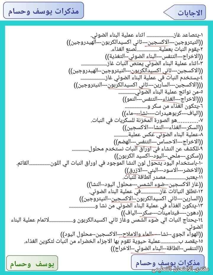 exam-eg.com_16180932028482.jpg