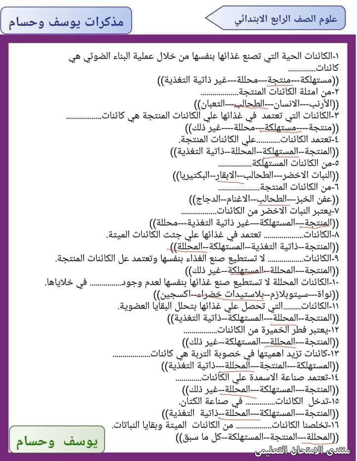 exam-eg.com_161809320288913.jpg