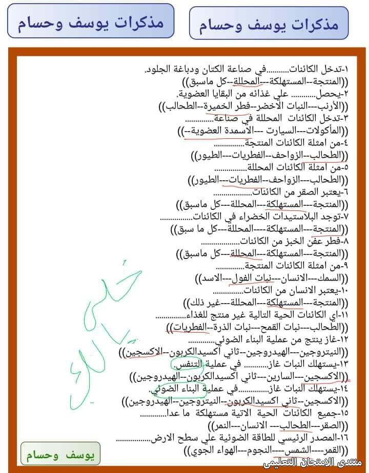 exam-eg.com_16180932029284.jpg