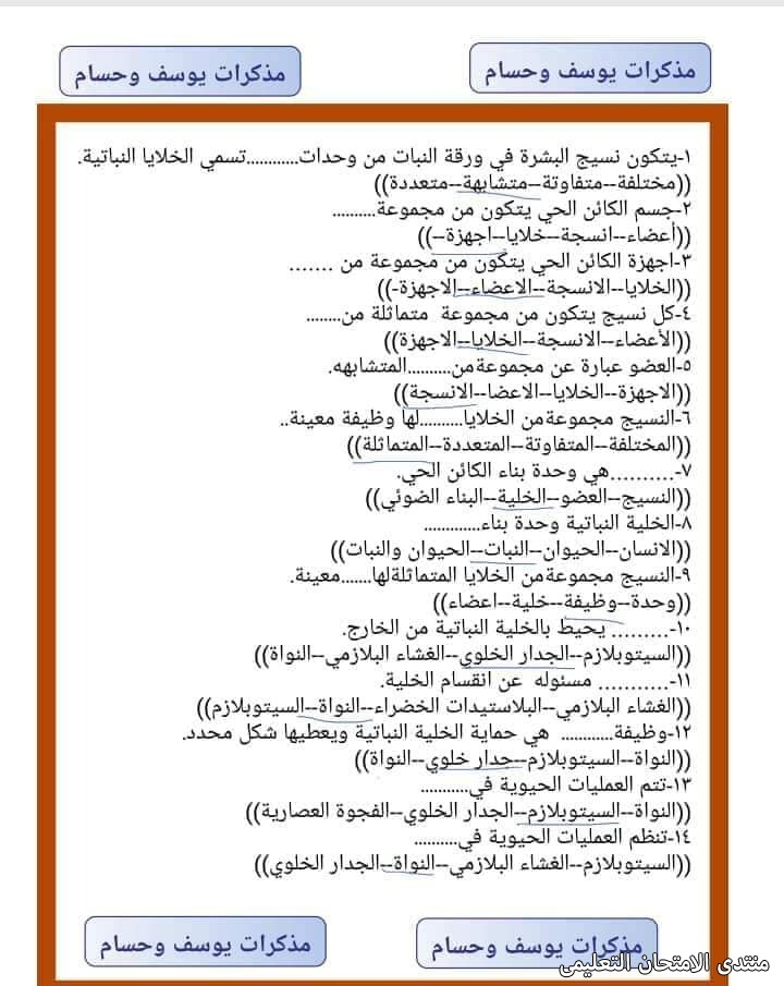 exam-eg.com_161809320296535.jpg