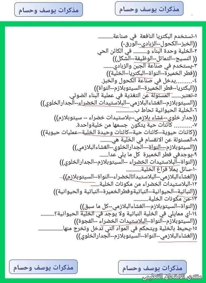 exam-eg.com_161809320307168.jpg