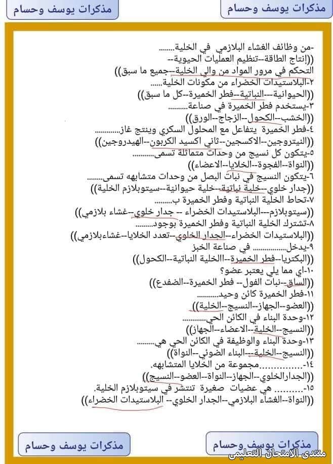 exam-eg.com_161809320310919.jpg