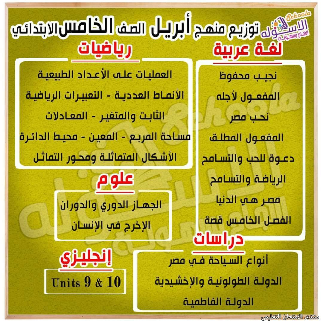 exam-eg.com_161824293447291.jpg