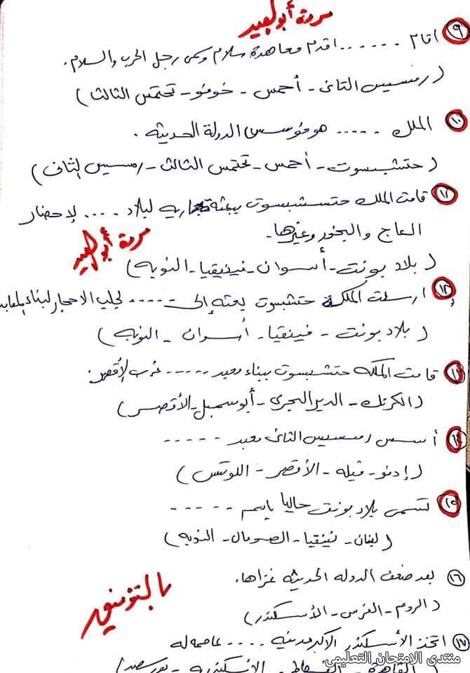 exam-eg.com_161832470217922.jpg