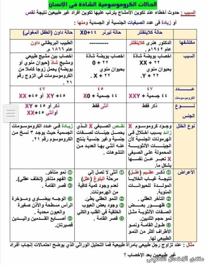 exam-eg.com_161832665499076.jpg