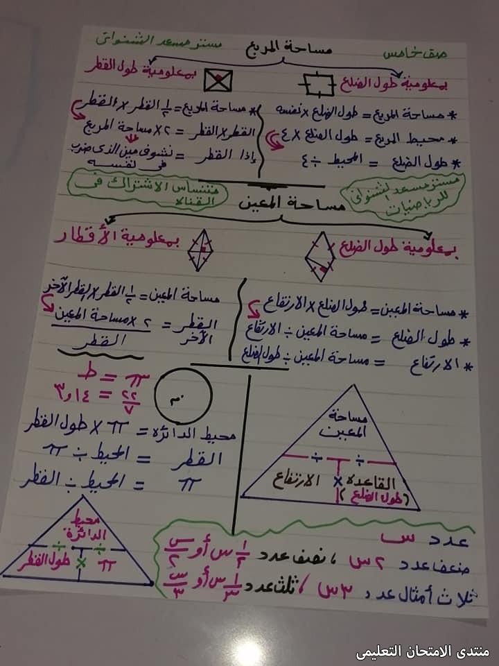 exam-eg.com_161868644254692.jpg