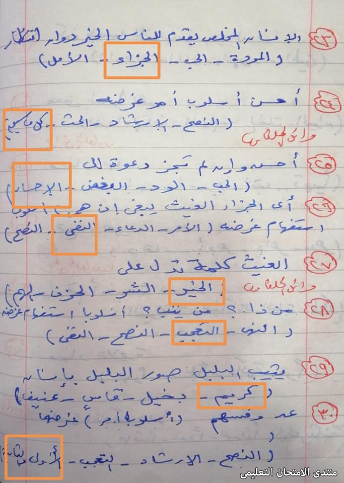 exam-eg.com_161875400000435.jpg