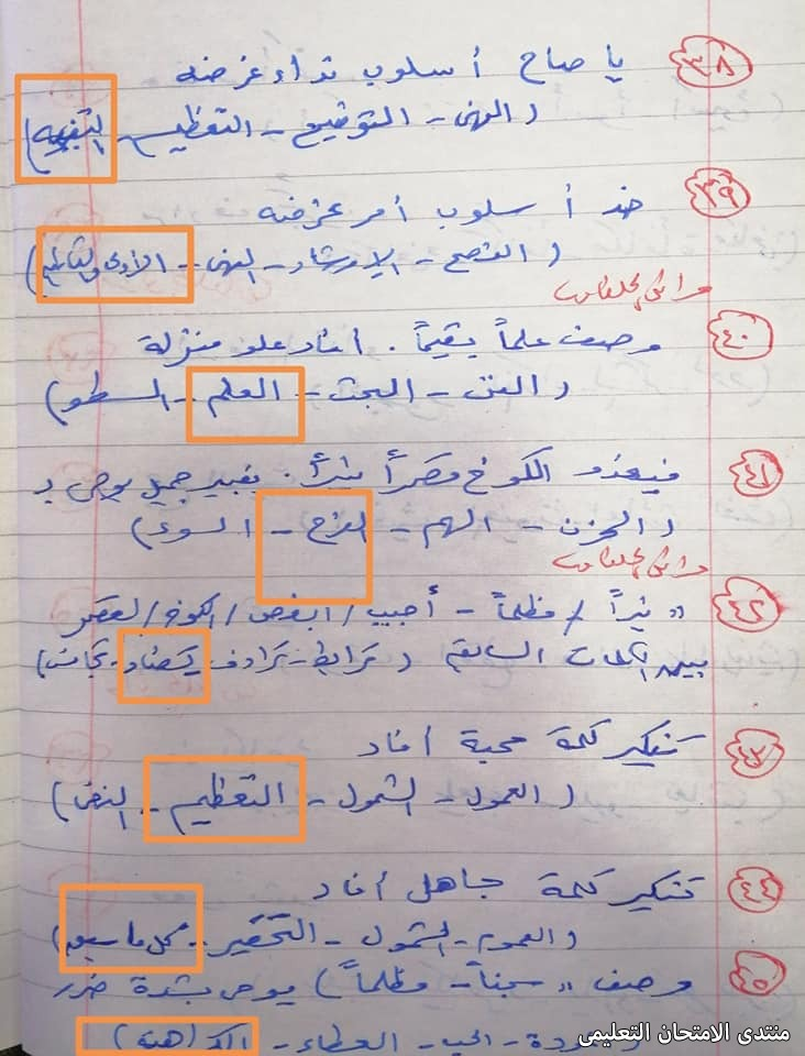 exam-eg.com_161875400033087.jpg