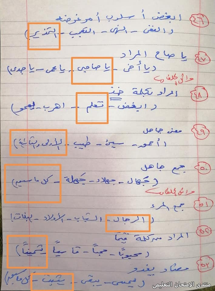 exam-eg.com_161875400064348.jpg