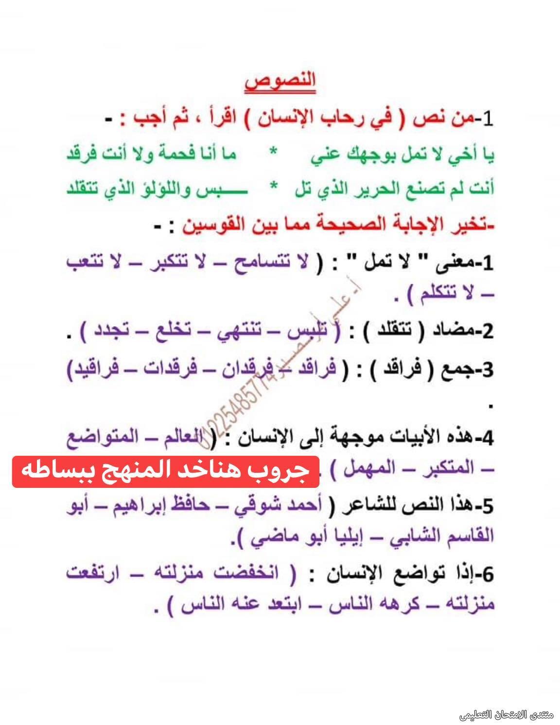 exam-eg.com_161875875800077.jpg