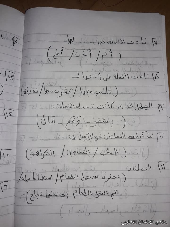 exam-eg.com_161893104355637.jpg