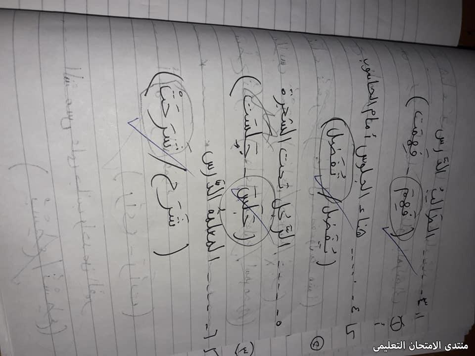 exam-eg.com_161893104362939.jpg