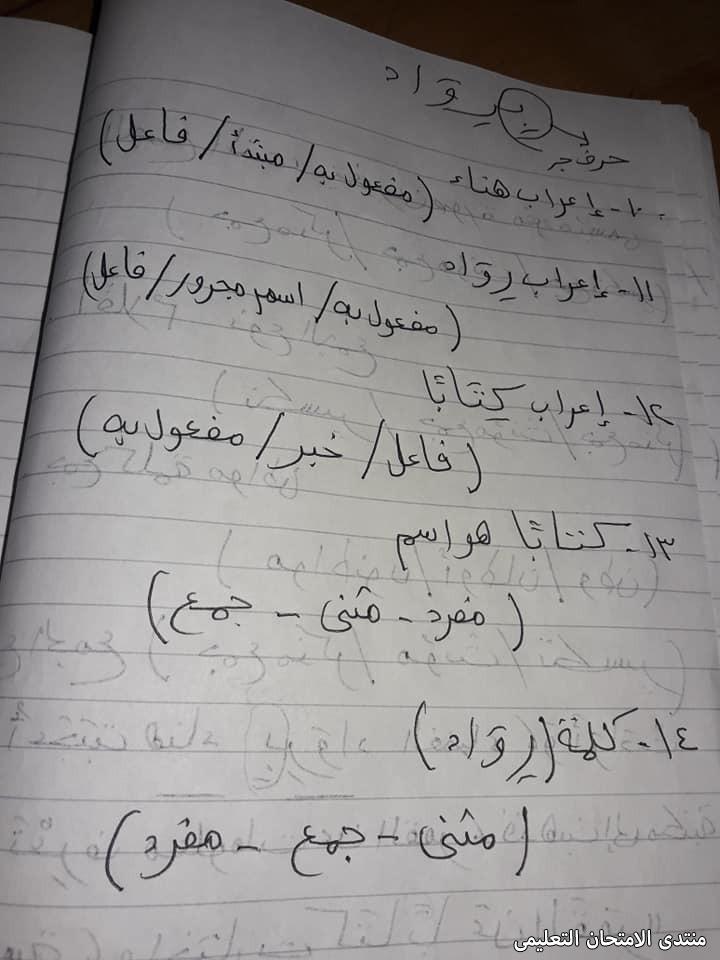 exam-eg.com_1618931044004919.jpg