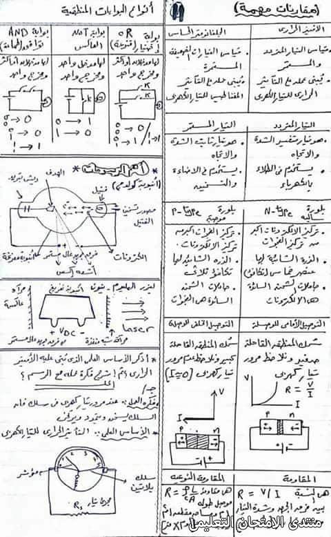exam-eg.com_1619145289493311.jpg