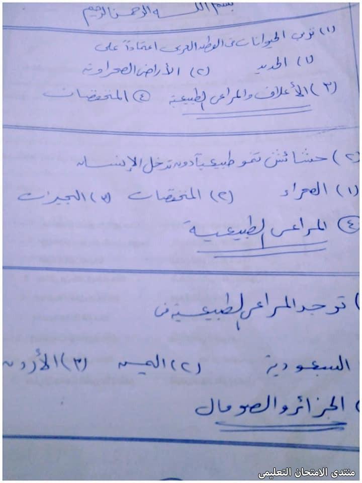 exam-eg.com_161919435991661.jpg