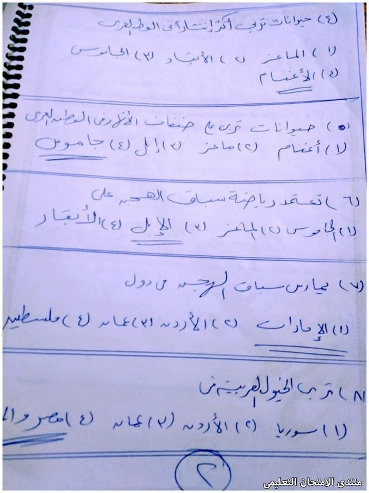 exam-eg.com_161919435996512.jpg