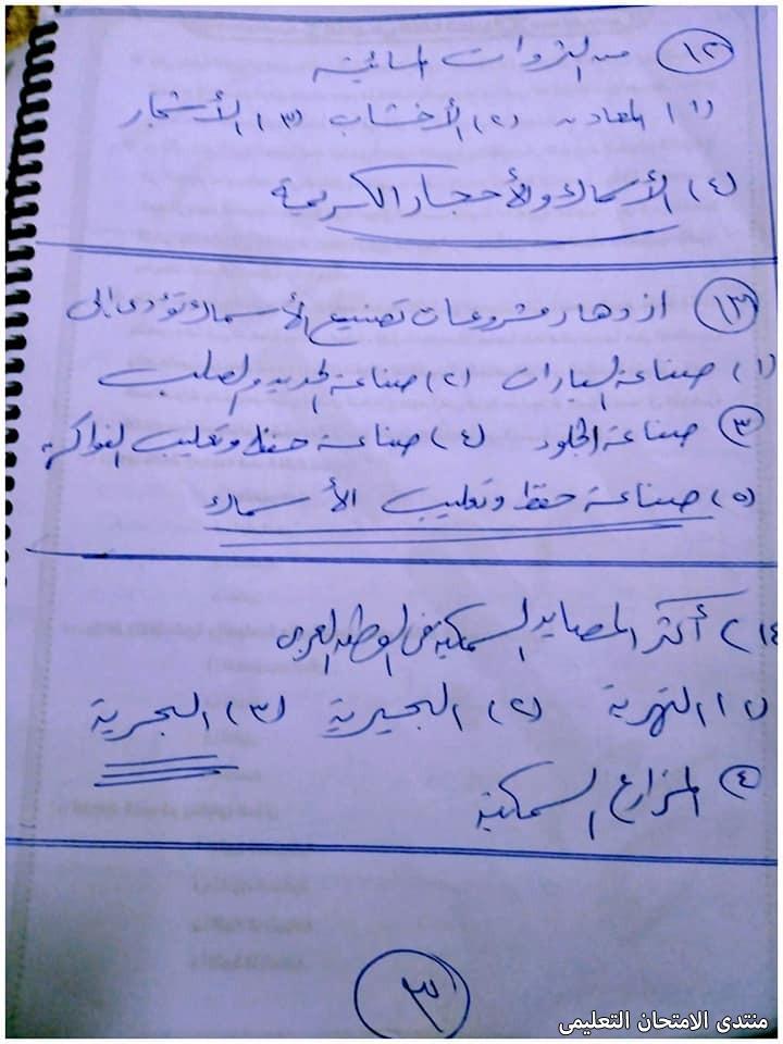 exam-eg.com_16191943600043.jpg