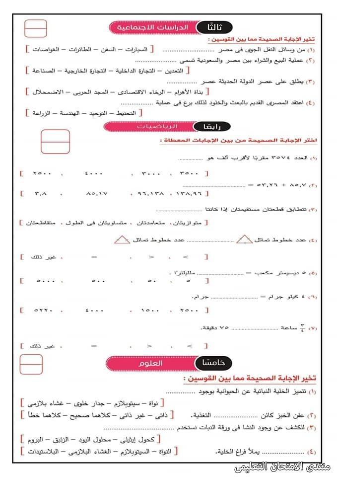 exam-eg.com_161919719990256.jpg