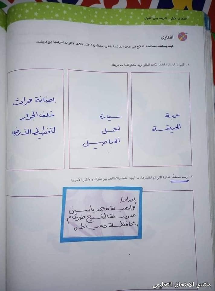 exam-eg.com_161919831979367.jpg