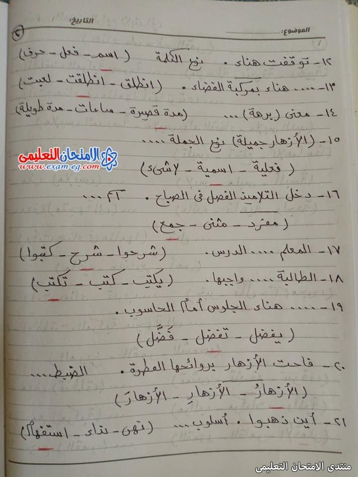exam-eg.com_16192791610572.jpg