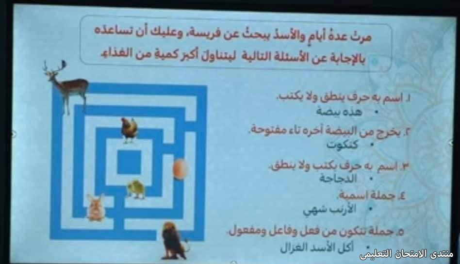 exam-eg.com_161927962145581.jpg