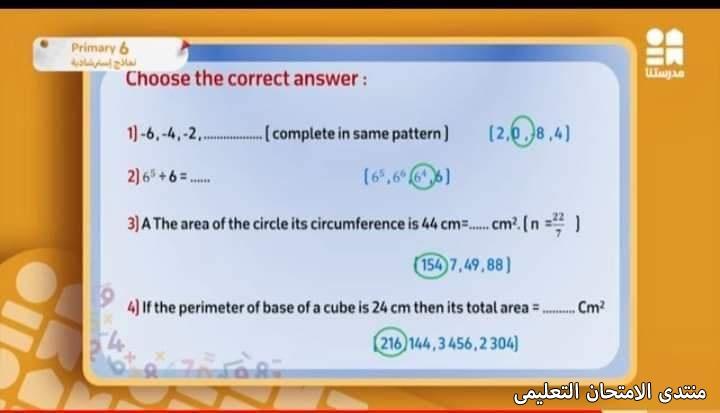 exam-eg.com_161928069604954.jpg